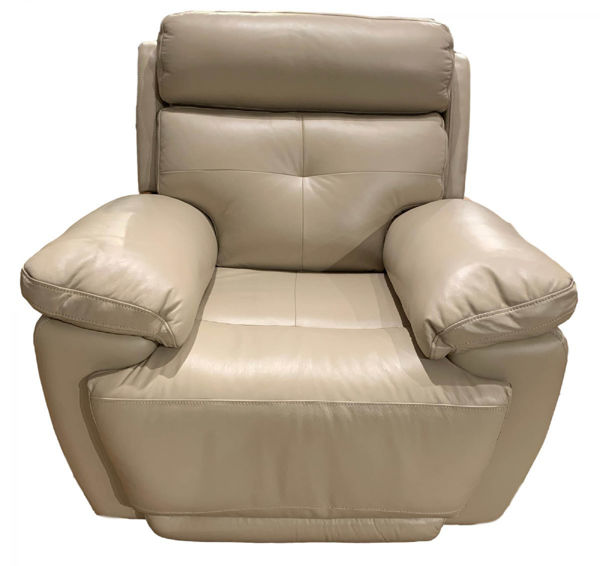 Picture of Leather Recliner